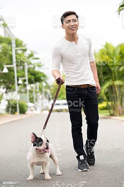 Walking bulldog picture id504860477?b=1&k=6&m=504860477&s=612x612&h=i9vur4arqscc nty0z8ztxc8jkyctql6tc3ca69vn4o=