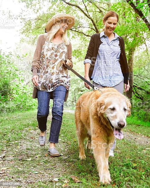 Walking dog picture id546431996?b=1&k=6&m=546431996&s=612x612&h= ohrom7rkgtn slpzamotj phxzfn82zjeuseuh1bfa=