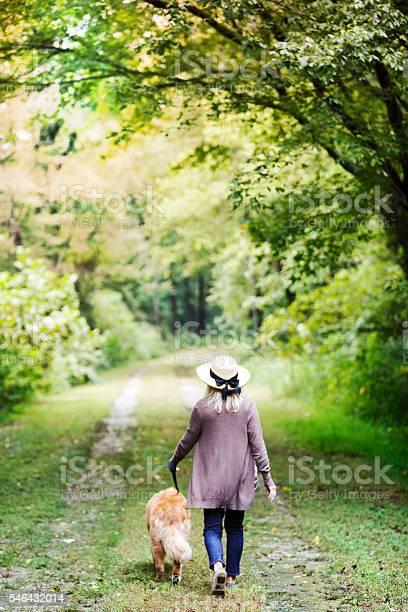 Walking dog picture id546432014?b=1&k=6&m=546432014&s=612x612&h=qa pscyadbugegynlty8qxgvau4ibo5y0joicvhhnvo=