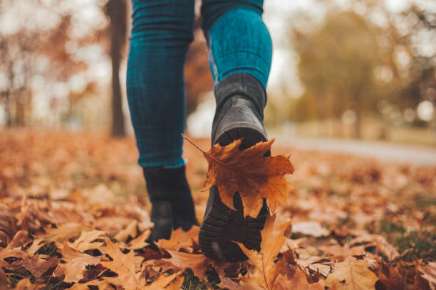 Caminando por el carril de otoño - foto de stock