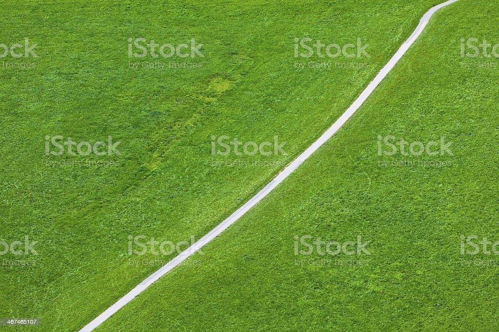 Walking footpath in green field stock photo
