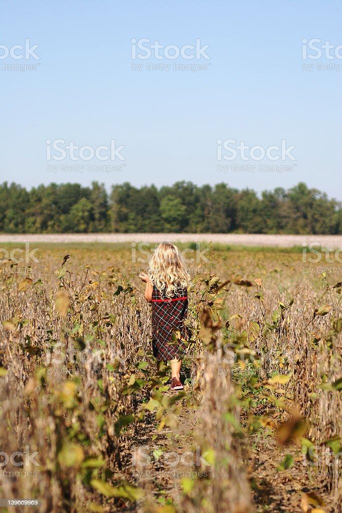 walking in a field royalty-free stock photo