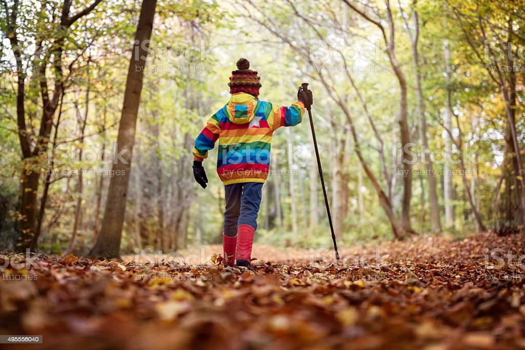 Walking in autumn and winter stock photo