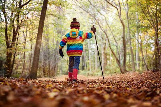 walking in autumn and winter - bos spelen stockfoto's en -beelden