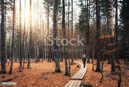 Wooden footpath leading through mysterious autumn forest with woman walking through it.