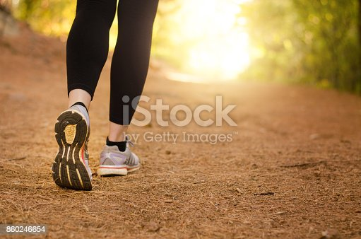istock Walking in nature 860246654