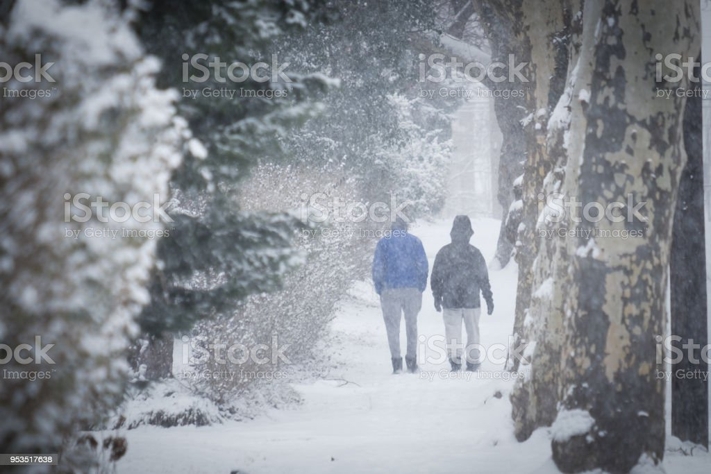 Walking in snowy forest stock photo