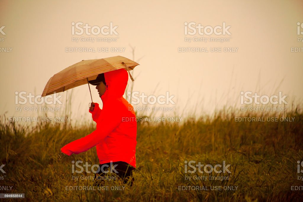 Side view of young man walking among the weeds in stormy weather. Red...