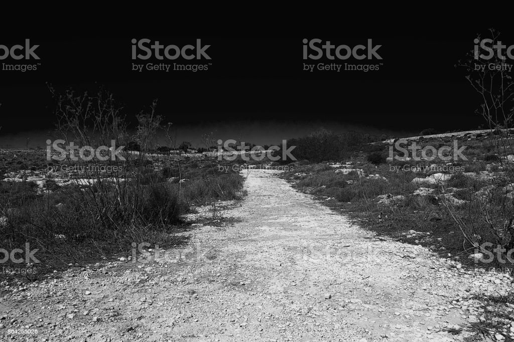 Walking in the Dark royalty-free stock photo