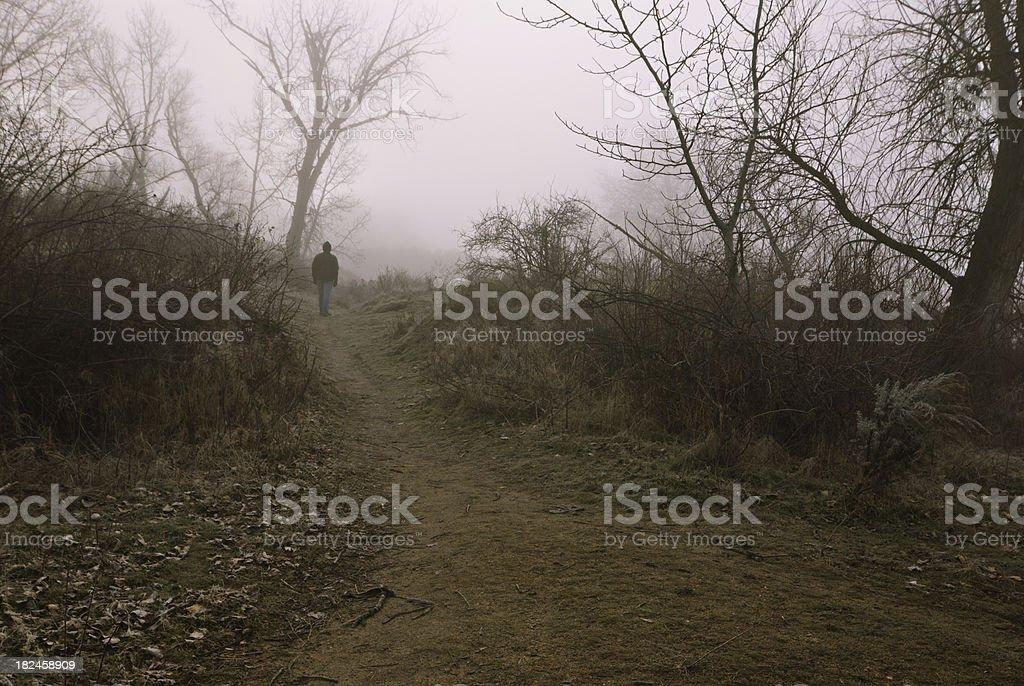 Caminando en la niebla foto de stock libre de derechos