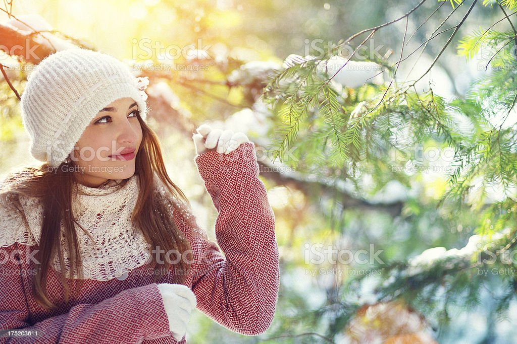 walking in the forest on a sunny winter day royalty-free stock photo