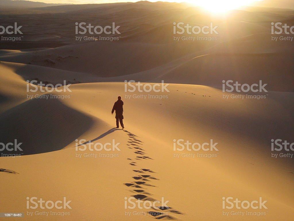 Walking in the Gobi stock photo