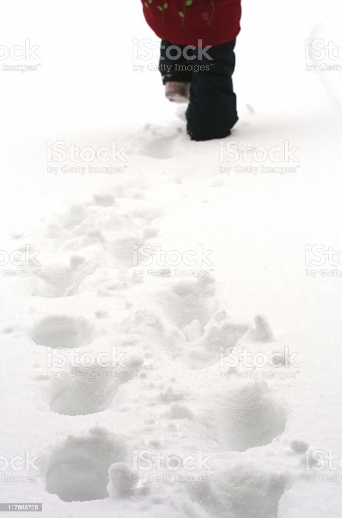 Walking in the Snow royalty-free stock photo