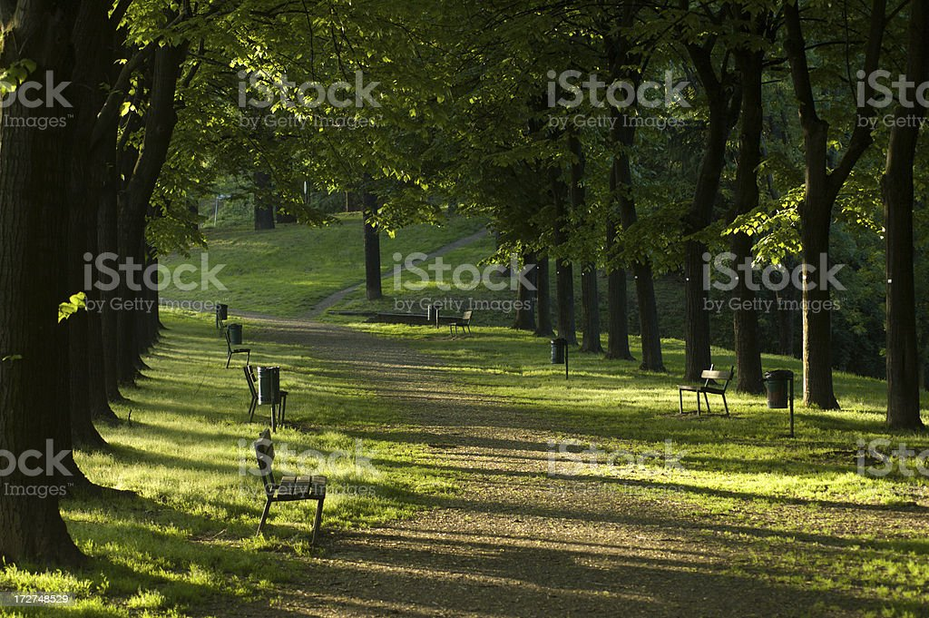 Walking in the town park royalty-free stock photo