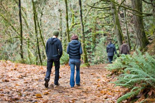 istock Walking in the Woods 184911817