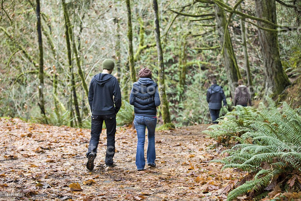 Walking in the Woods stock photo