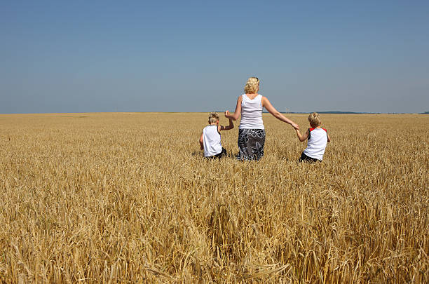 Walking In Wheat stock photo