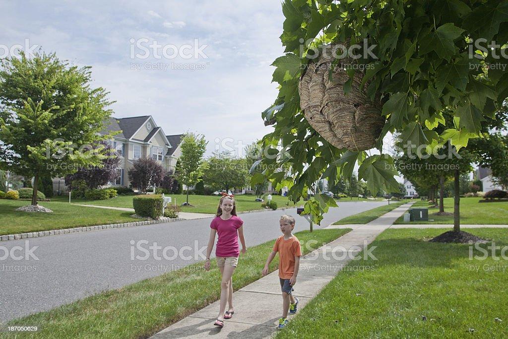 Walking into Danger royalty-free stock photo