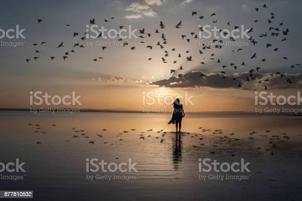 Walking into sunset picture id877810532?b=1&k=6&m=877810532&s=612x612&h=cowooyqcpjkvmkld1ejxipx 9 fjr4jrsaoq0oent i=