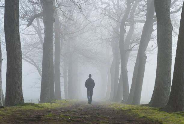 Walking into the fog stock photo