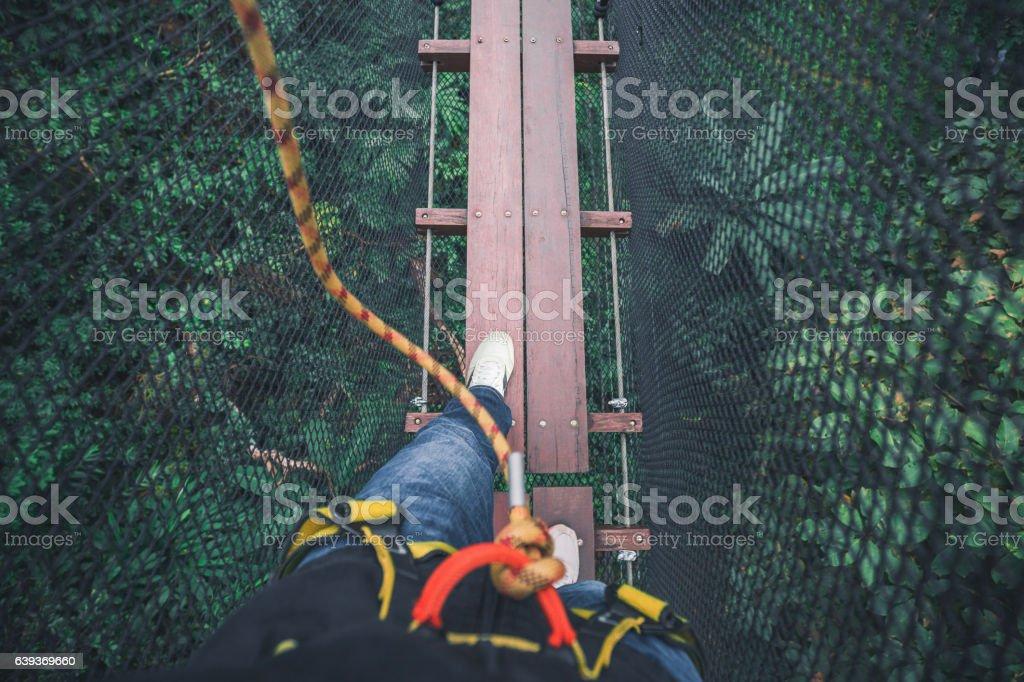 Walking on bridge on top tree – Foto