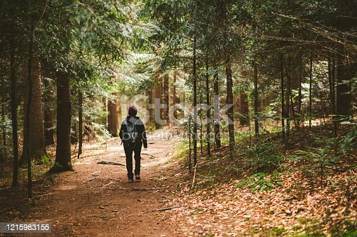 Woman with backpack walking in forest. Back view in early spring forest
