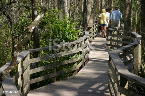 Walking on a wooden deck at the Cork Screw National Park in Florida.