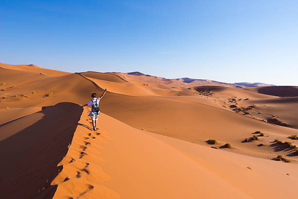 Walking on the sand dunes, Namibia, Africa Tourist walking on the scenic dunes of Sossusvlei, Namib desert, Namib Naukluft National Park, Namibia. Afternoon light. Adventure and exploration in Africa. namibia stock pictures, royalty-free photos & images