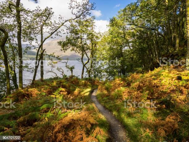Photo of walking on the west highland way near loch lomond, scotland