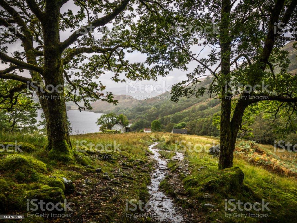 walking on the west highland way near loch lomond, scotland stock photo