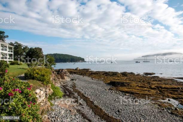 Photo of Walking path along Bar Harbors shore Maine