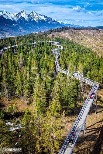 istock Walking path among the trees in Zdiar, Slovakia 1196525557