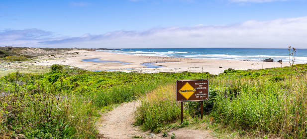 Walking path going through green shrubs towards a sandy beach; sign warning of Recurring Rip Currents posted on the trail; Gazos Creek Año Nuevo State Park, Pacific Ocean coastline, California