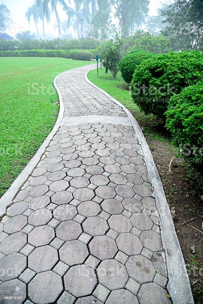 Walking path foto stock royalty-free