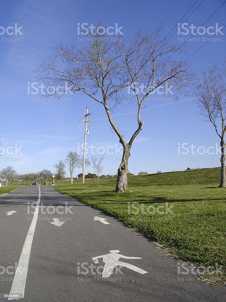 Walking Path royalty-free stock photo