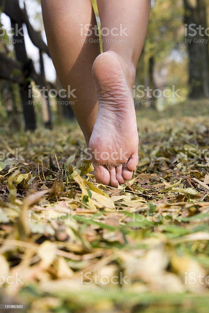 Walking stock photo