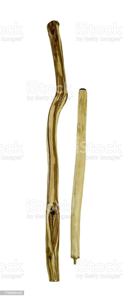 Walking Stick stock photo