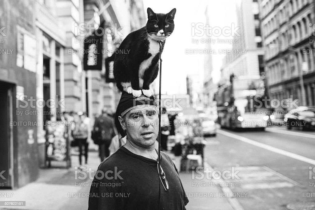 Walking the cat in New York stock photo