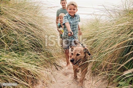 istock Walking the Dog at the Beach 932363450