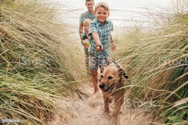 Walking the dog at the beach picture id932363450?b=1&k=6&m=932363450&s=612x612&h=zcx8ww6pn1yixhqgcsdtm xtodo9tcrbzafyfn pnxc=