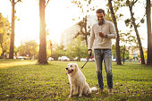 istock Walking the dog 903984984