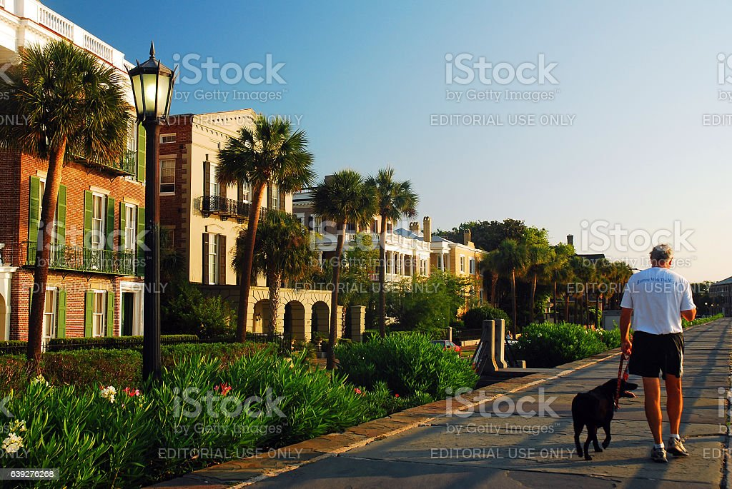 Walking the dog through history stock photo