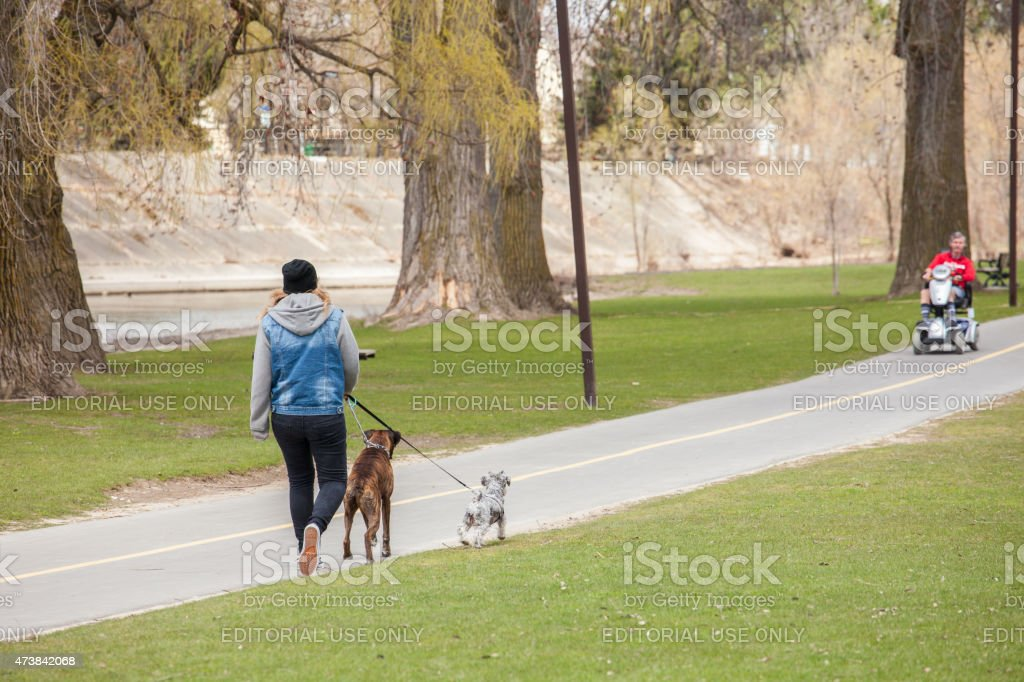 Woman walking her dogs outdoors along the a paved trail near the...