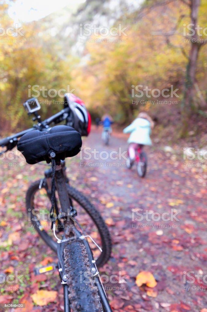 Caminando el bosque. - foto de stock