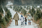 An Asian family is outdoors at a Christmas tree farm during winter. They are wearing warm coats and hats. The father, daughter, mother and son are walking hand-in-hand to search for a Christmas tree. Snow is gently falling.