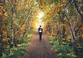 Woman walking through the autumn colored birch forest in North Iceland.
