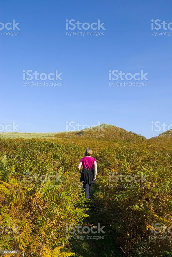 Walking through the country royalty-free stock photo