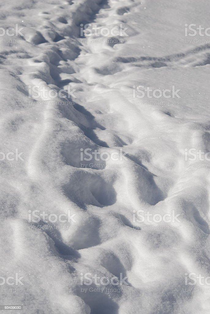 Zu Fuß durch den Schnee Lizenzfreies stock-foto