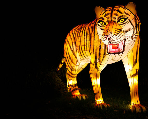 Walking Tiger Chinese lantern stock photo