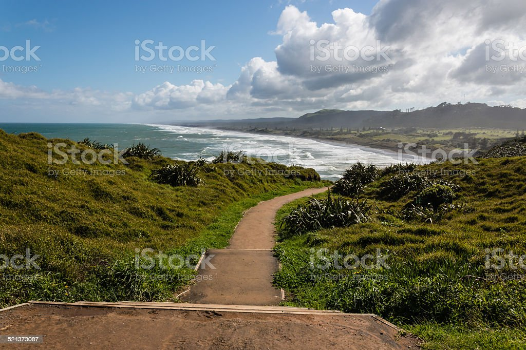 walking track above Muriwai Beach stock photo